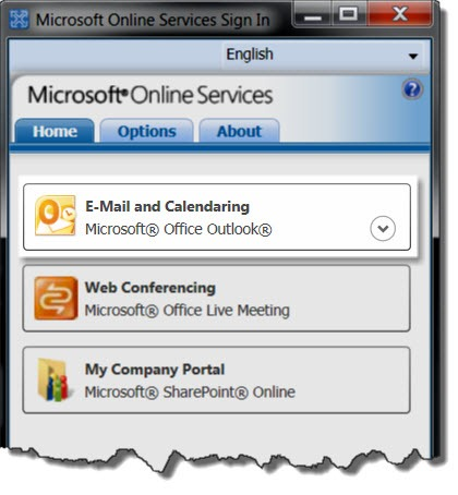 Microsoft Online Services Changing Your Password Bruceb Consulting