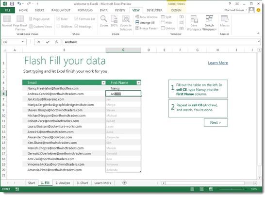 Office 2013 - Excel - form fill