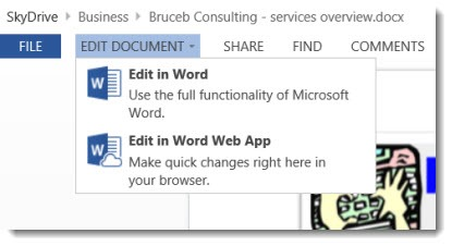 Skydrive - Office web app editing choices
