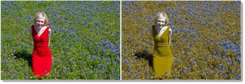 Red-green color blindness - photo comparison