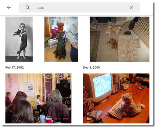 Google Photos - searching for cats